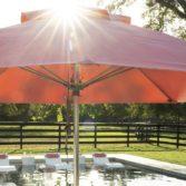 Ledge Lounger Premier Umbrella overlooking the pool